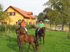 Fattoria Agrituristica Vrbnjak in Slovenia