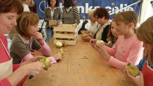 Parco Regionale del Kozjansko: scopri in Slovenia il Kozjansko Apple Festival