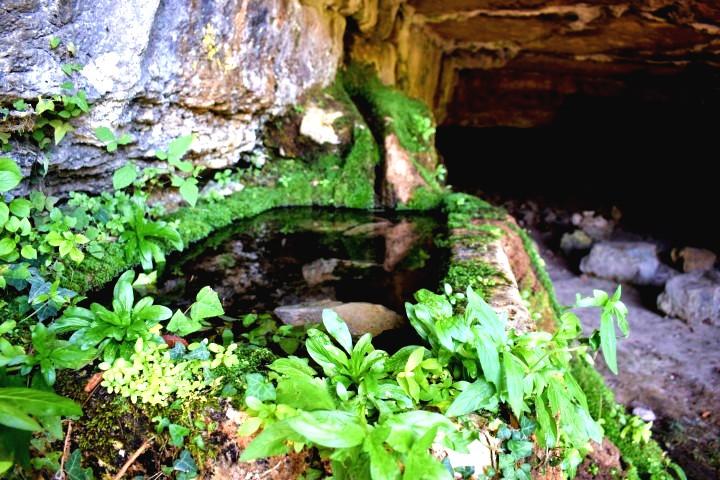 Waterspring Kašteljer - sorgenti d'acqua naturali Istria
