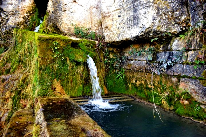 sorgenti d'acqua naturali in Istria - Waterspring Momjan