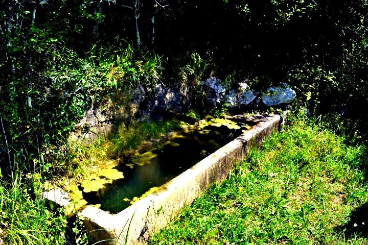 Waterspring Čiritez - sorgenti d'acqua naturali Istria