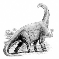 Datule Barbariga dinosaur