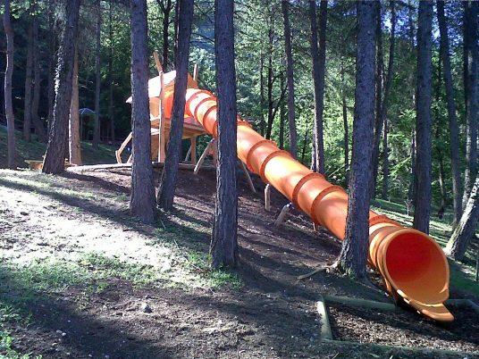 scivolo nel bosco