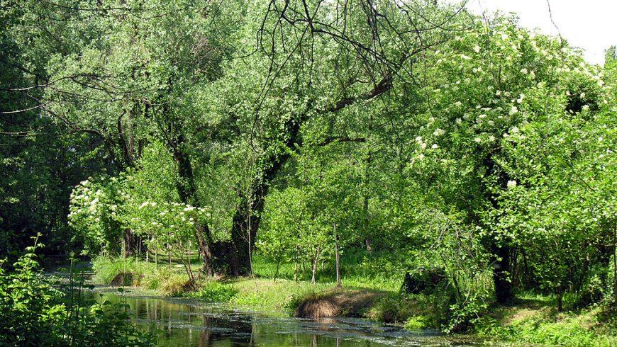 Parco Naturale del Sile