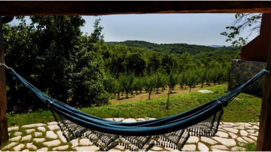 Fai un periodo di relax e detox presso la Tenuta Ekodrom, dove troverai degli spendidi cottage da sogno