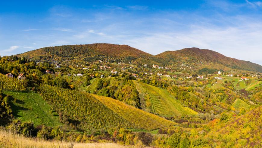 Monte Plešivica, Regione croata dello Champagne