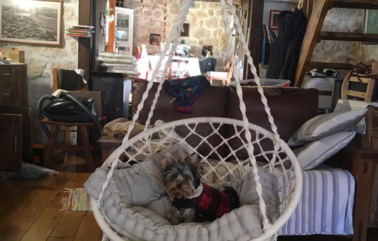 Eco villa dog-friendly Trogir