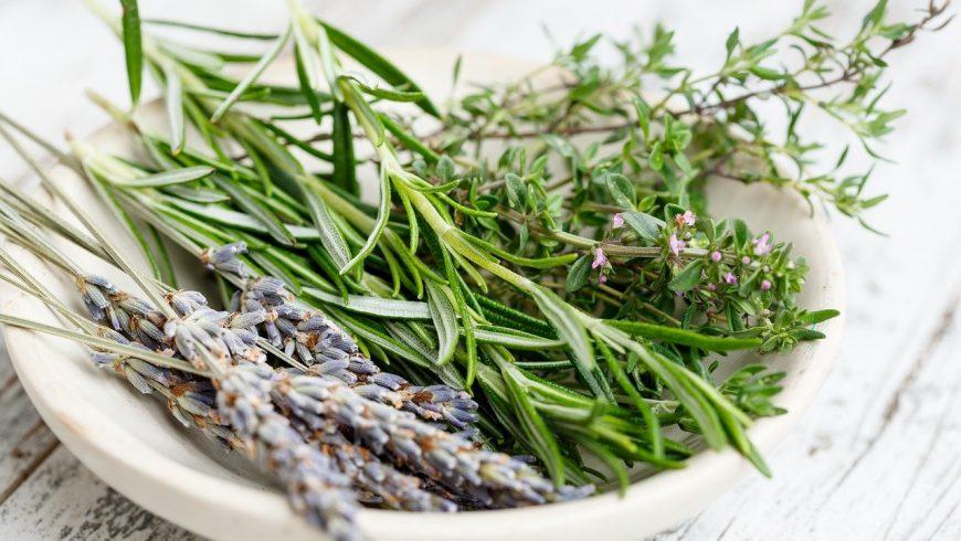 Mazzo di erbe aromatiche