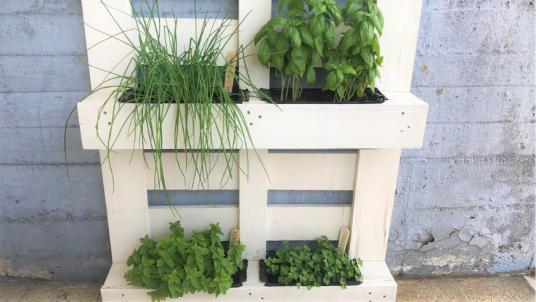 Il tuo giardino verticale in pallet nella tua terrazza