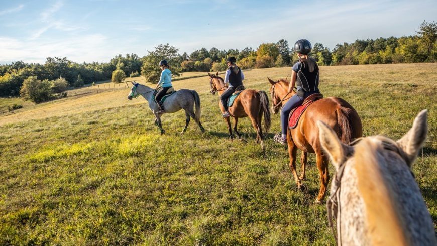 Andare a cavallo nell'Istria centrale: una delle esperienze green da fare assolutamente in Istria