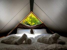 Interno di una tenda con letti