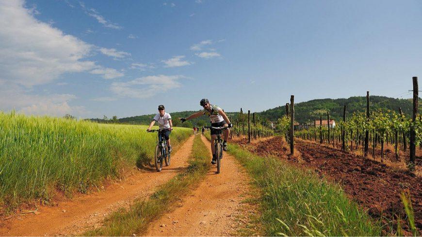 Il periodo migliore in cui percorrere la Parenzana in bicicletta