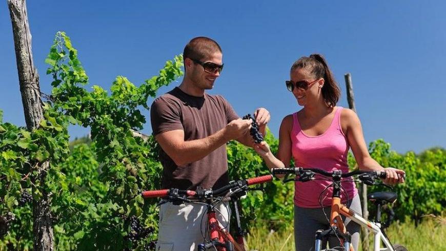 Percorrere la Parenzana in bicicletta è un'attività adatta a tutti, dai più piccoli ai più adulti; dai meno allenati, ai più sportivi