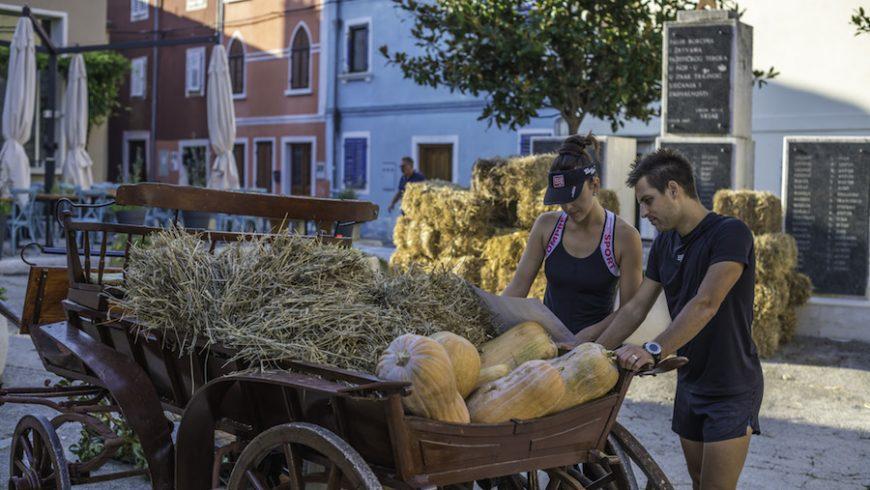 Carro di fieno e ortaggi durante il viaggio green in Istria