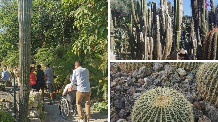 Visitatori passeggiano nel giardino botanico osservando le piante grasse