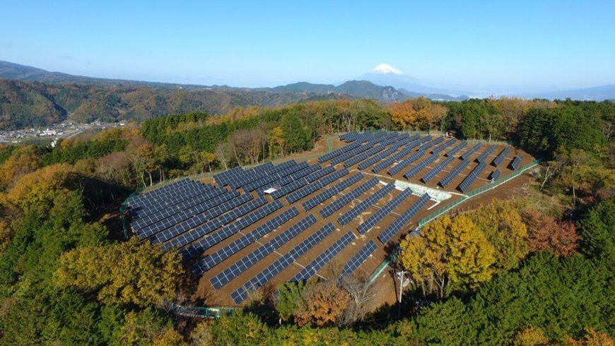 Pannelli solari in mezzo al verde, tra le fonti rinnovabili
