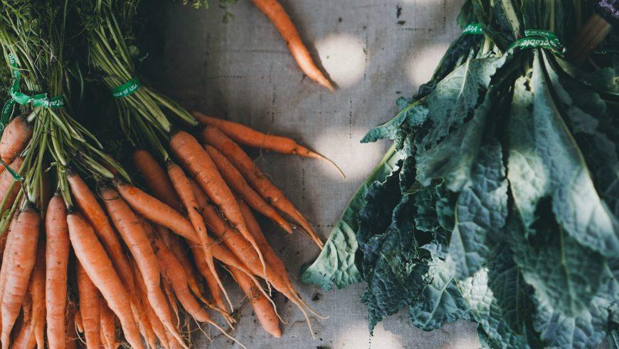 verdure bio