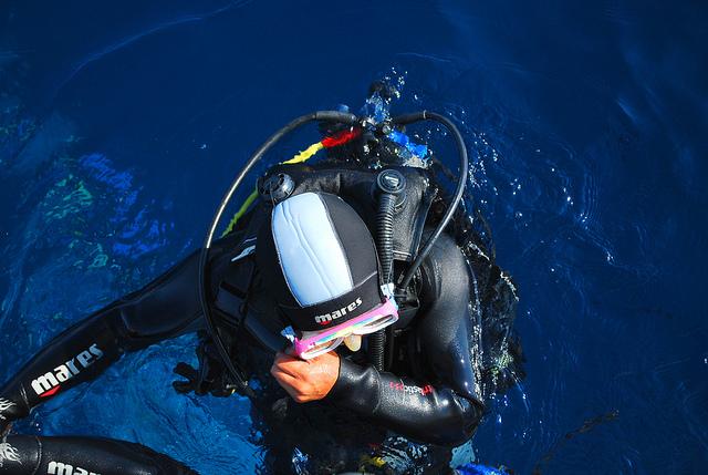 Attività subacquea al parco naturale di Tepilora
