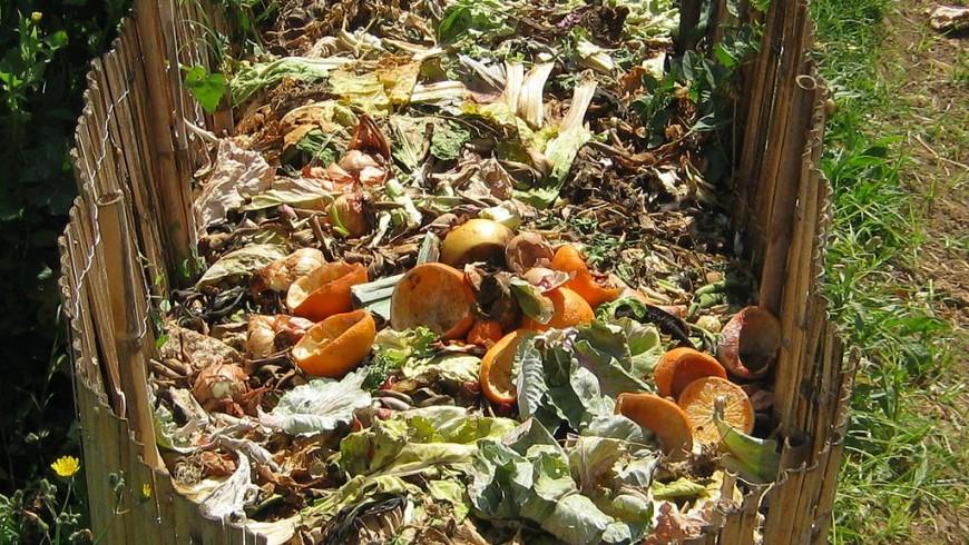 riufiuti compost