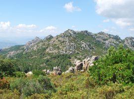 Monte al Parco Naturale di Tepilora