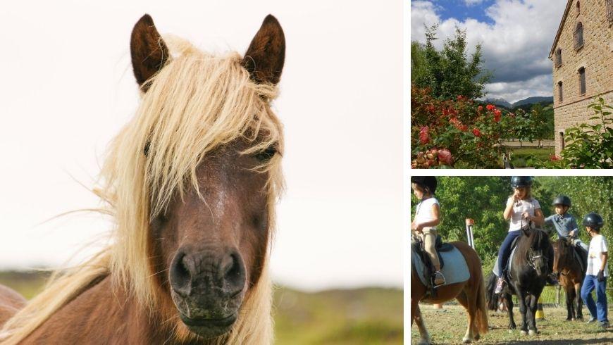 amandola vacanza in fattoria nelle Marche