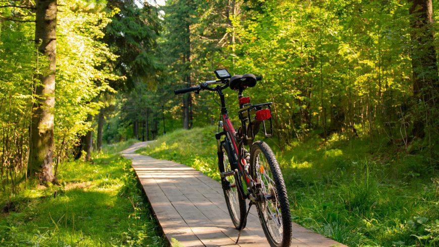 servizio di noleggio biciclette
