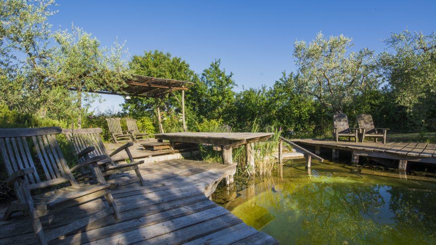 Consigli per Viaggiare Eco-Friendly: scegli un hotel ecologico