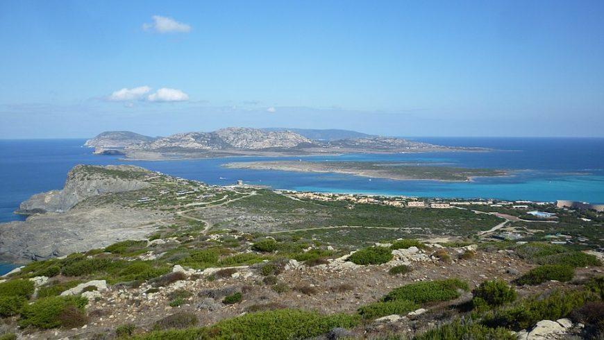 Isola Asinara vista da Torre del Falcone