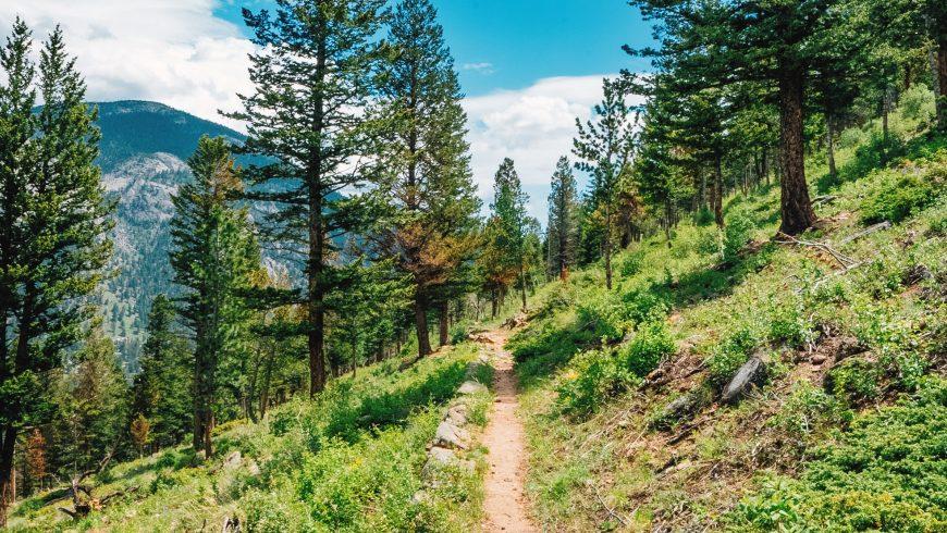 parco naturale: rimani sul sentiero segnalato