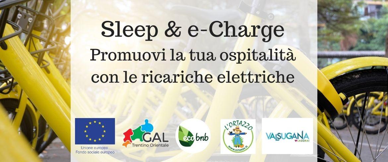 sleep charge ebike ecars workshop