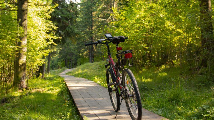 Consigli per Viaggiare Eco-Friendly: usa la bici