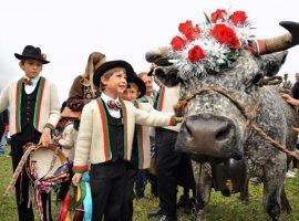Regala una vacanza sostenibile a Cogne