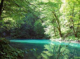 Veseli Leptir Kupa river