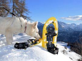 Regala una Gift Card per una vacanza nelle Perle Alpine