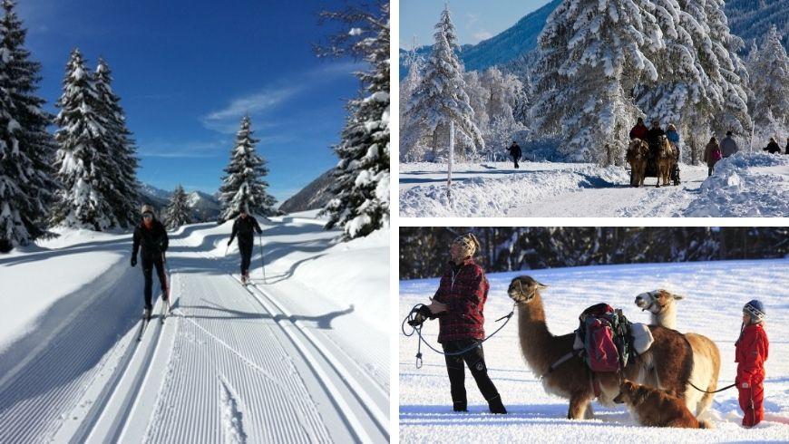 mobilità dolce sulla neve