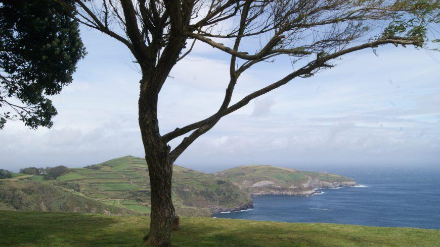 Miradouro. Azores. Photo by Irene Paolinelli