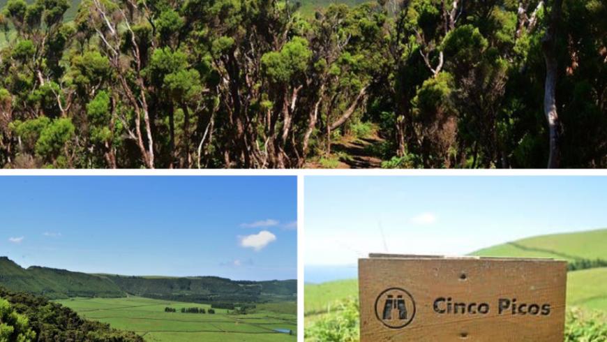 Passagem das Bestas, Isola di Terceira