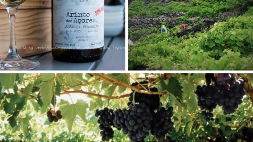 Arinto dos Açores. Cibo locale Azzorre
