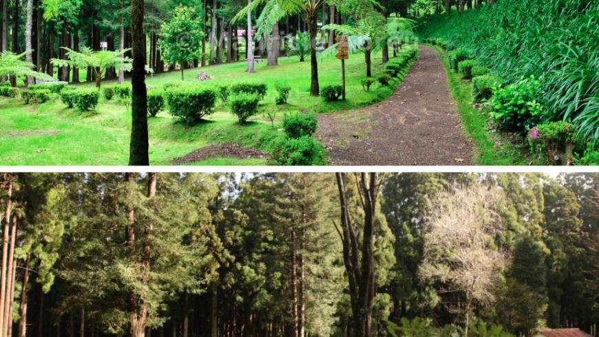 Fontinhas - Parco Naturale.