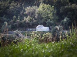 stanza bolla per dormire nel bosco
