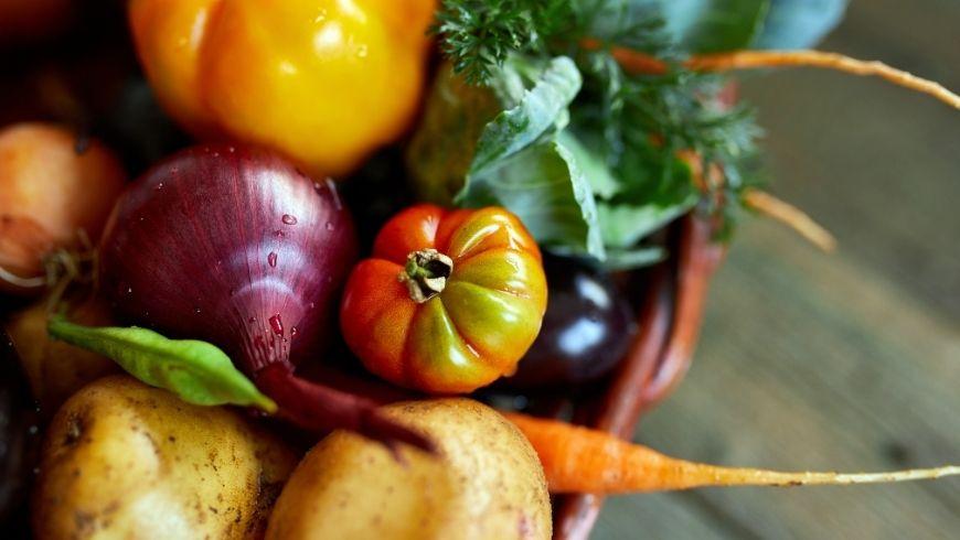 pomodori, cipolle e patate biologiche