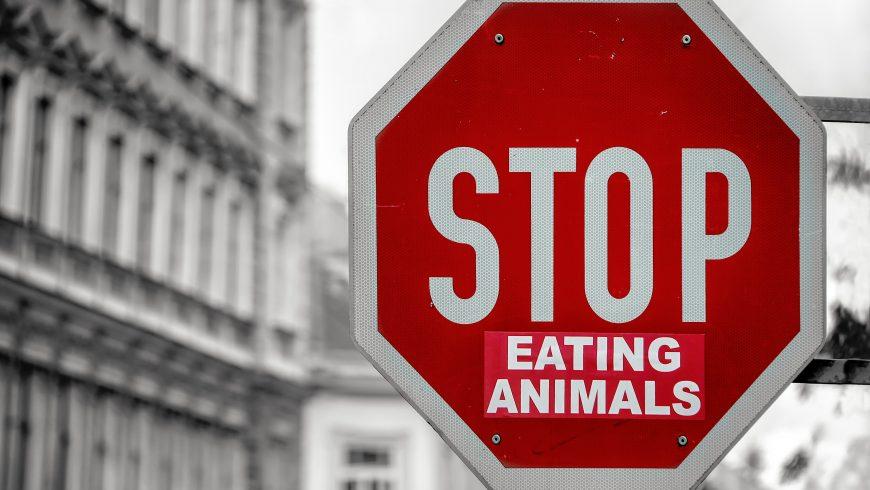 cartello stradale che indica di mangiare meno carne, contro l'estinzione degli animali