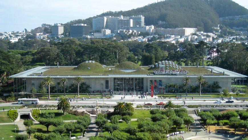 California Academy of Sciences, il Museo più Green al mondo