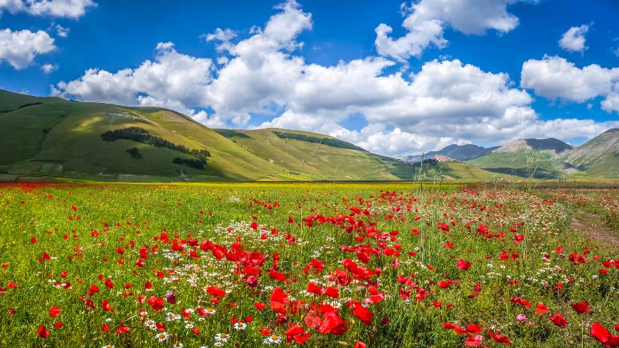 Scoprire i benefici della natura tra il verde dell'Umbria
