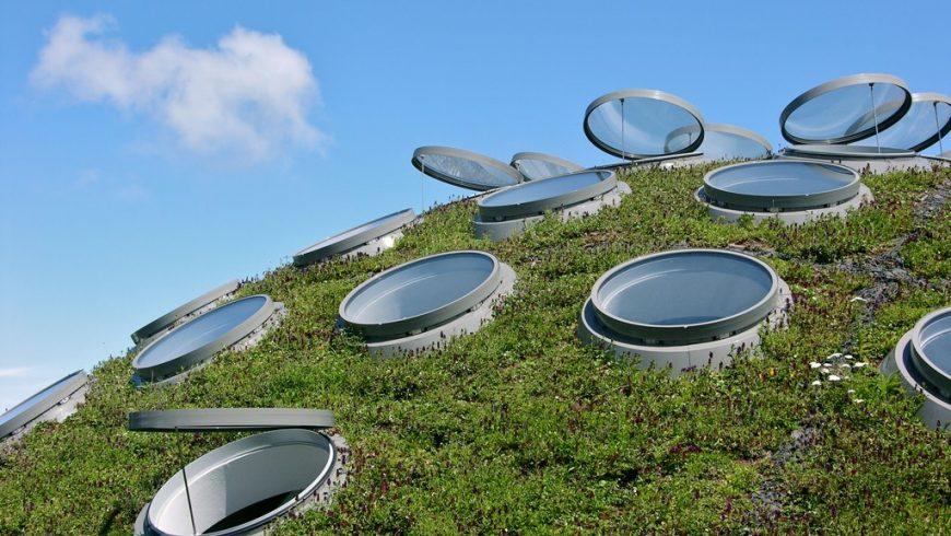 tetto verde museo green san francisco