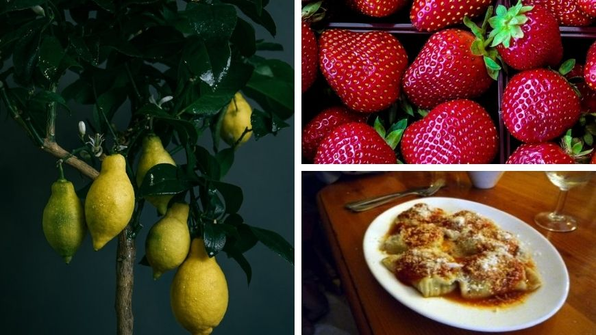 fragole, limoni e tortine ripiene di ricotta