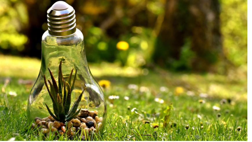 Risparmia energia per ridurre il tuo impatto
