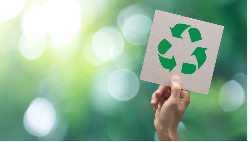 Come gestire i rifiuti nel tuo hotel green