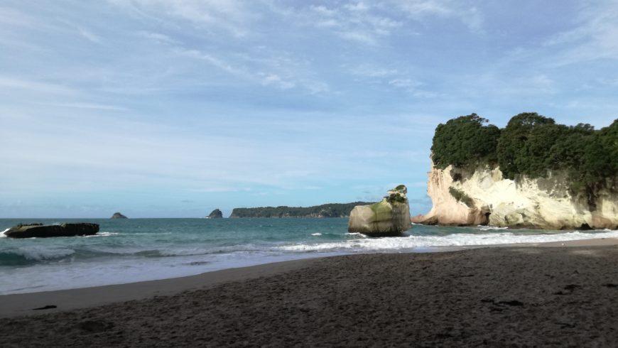 Cathedral Cove Beach, spiagge in Nuova Zelanda
