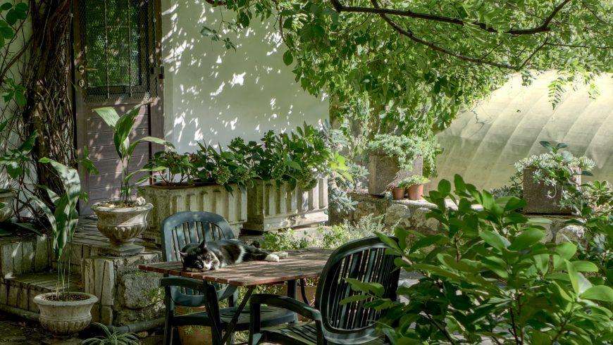 Giardinetto nella casa delle vacanze